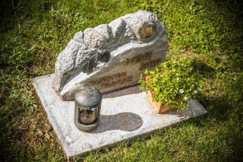 Fels aus bruchrauem Paradiso mit Bronzeschrift
